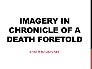 Imagery in Chronicle of a Death Foretold