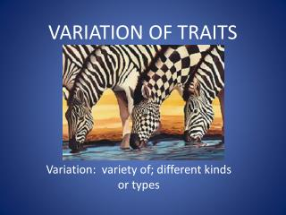 VARIATION OF TRAITS