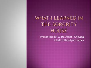 What I learned in the sorority house