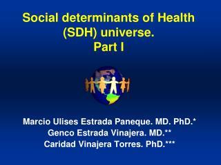 Social determinants of Health (SDH) universe. Part I