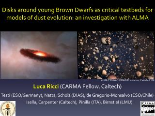 Disks around  y oung Brown Dwarfs as critical  testbeds  for
