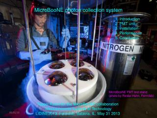 MicroBooNE photon collection system