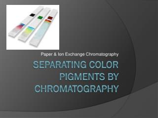 Separating Color Pigments by Chromatography