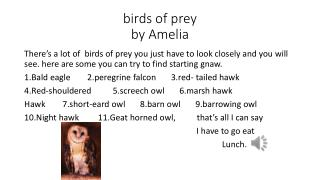birds of prey  by Amelia