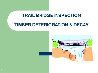 TRAIL BRIDGE INSPECTION  TIMBER DETERIORATION & DECAY