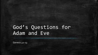 God's Questions for Adam and Eve