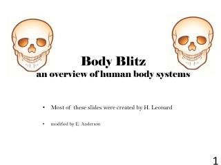Body Blitz an overview of human body systems
