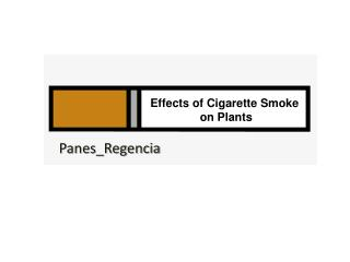 Effects of Cigarette Smoke  on Plants