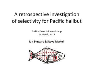 A retrospective investigation of selectivity for Pacific halibut  CAPAM Selectivity workshop