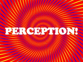 PERCEPTION!