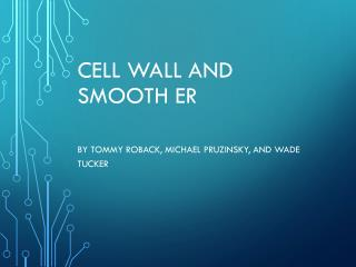 Cell Wall and Smooth ER
