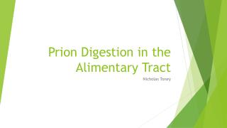 Prion Digestion in the Alimentary Tract