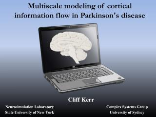 Multiscale modeling of cortical information flow in Parkinson's  disease