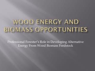 WOOD ENERGY AND BIOMASS OPPORTUNITIES