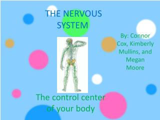 The control center of your body