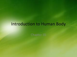 Introduction to Human Body