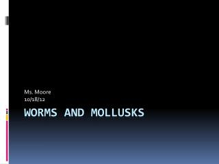 Worms and Mollusks