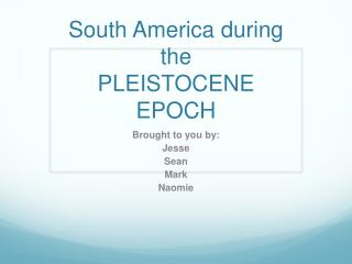South America during the  PLEISTOCENE EPOCH