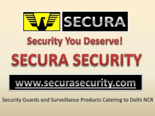Personal Security Officer Services