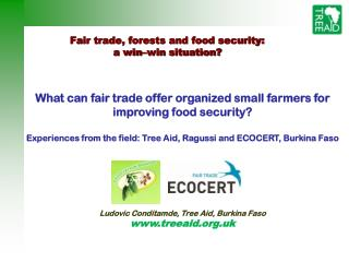 Fair trade, forests and food security: a win–win situation?