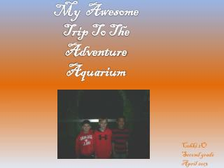 My  Awesome  Trip To The Adventure Aquarium