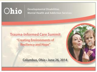 Trauma Informed System of Care:  Creating Environments of Resiliency and Hope