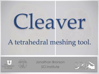 Cleaver A tetrahedral meshing tool.