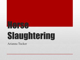 Horse Slaughtering