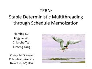 TERN: Stable Deterministic Multithreading through Schedule  Memoization