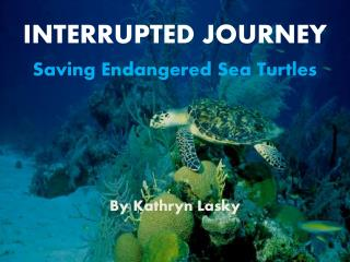 INTERRUPTED JOURNEY Saving Endangered Sea Turtles