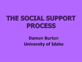 THE SOCIAL SUPPORT PROCESS