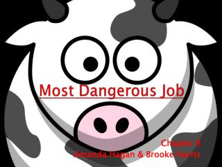 Most Dangerous Job