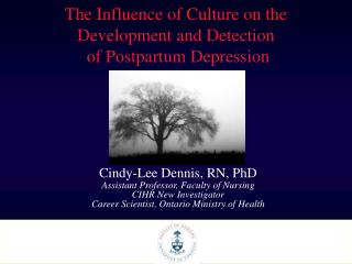 The Influence of Culture on the Development and Detection  of Postpartum Depression