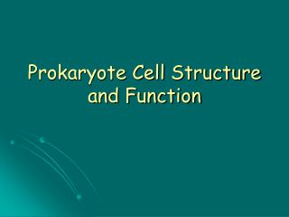 Prokaryote Cell Structure and Function