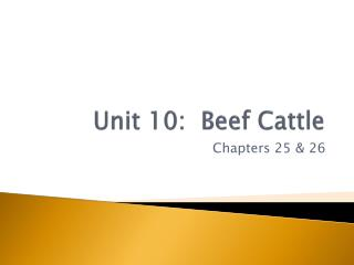 Unit  10:   Beef Cattle