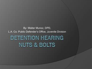 DETENTION HEARING  NUTS & BOLTS