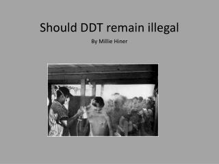 Should DDT remain illegal