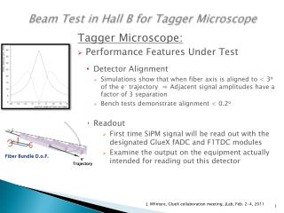 Beam Test in Hall B for Tagger Microscope