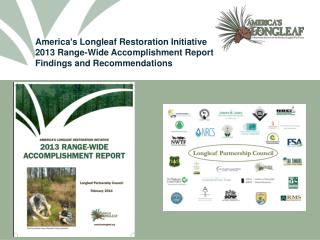 America's Longleaf Restoration Initiative 2013 Range-Wide Accomplishment Report