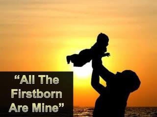 """All The Firstborn Are Mine"""