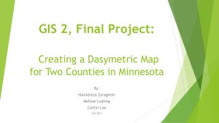 GIS 2, Final Project: Creating  a Dasymetric Map for  Two Counties  in Minnesota