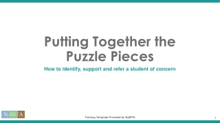 Putting Together the Puzzle Pieces