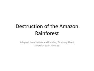 Destruction of the Amazon Rainforest
