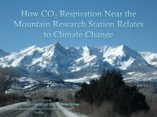 How CO 2  Respiration Near the Mountain Research Station Relates to Climate Change