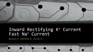 Inward Rectifying K +  Current Fast Na +  Current