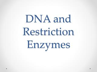 DNA and Restriction Enzymes