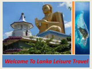 Tour en Travel in Srilanka