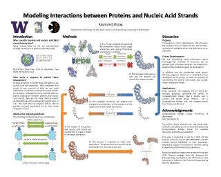 Modeling Interactions between Proteins and  Nucleic  Acid Strands