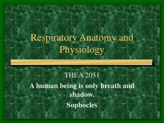 Respiratory Anatomy and Physiology