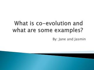What is co-evolution and what are some examples?